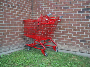 shopping cart #9